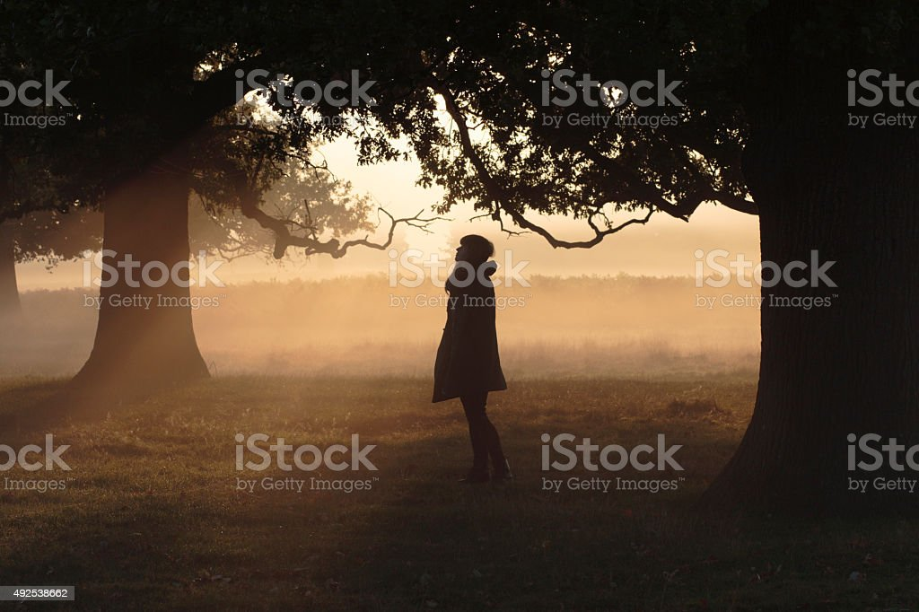 Profile silhouette Latvian outdoor girl model in foggy sunbeams stock photo