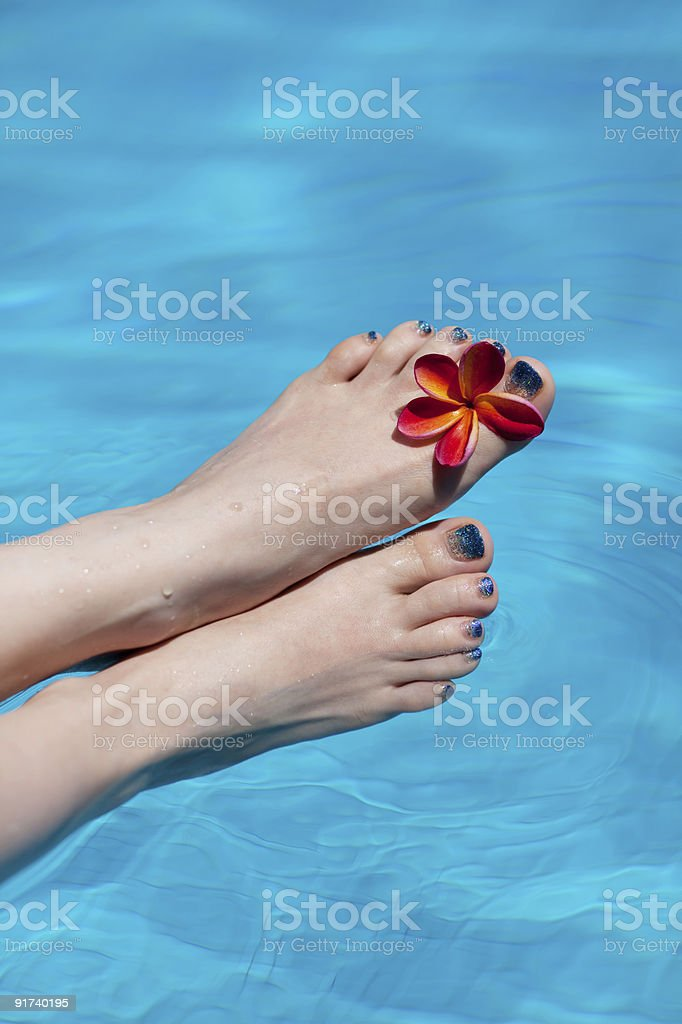beautiful legs in the swiming pool royalty-free stock photo