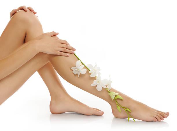 schöne beine - wachsblume stock-fotos und bilder
