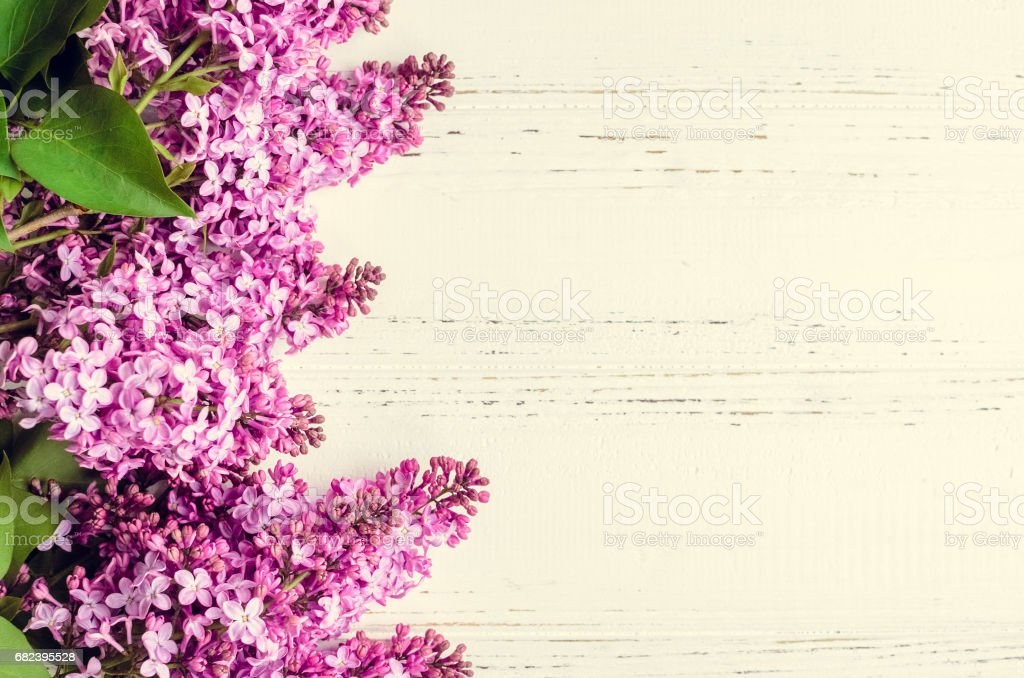 Beautiful lilac on a wooden background royalty-free stock photo