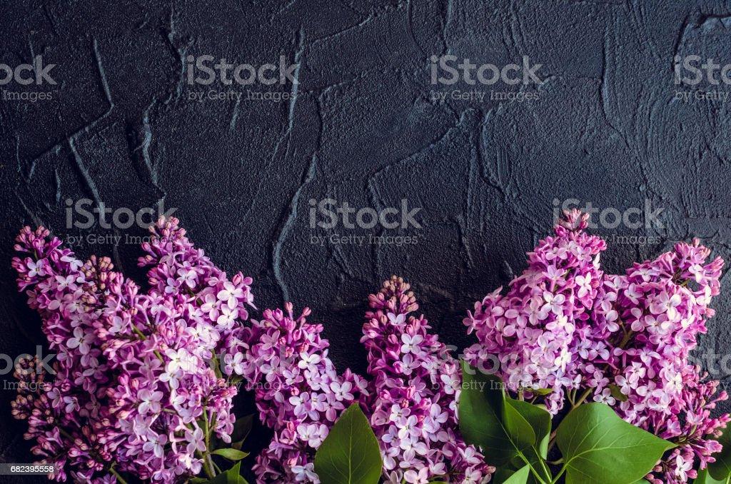 Beautiful lilac on dark stone background royalty-free stock photo