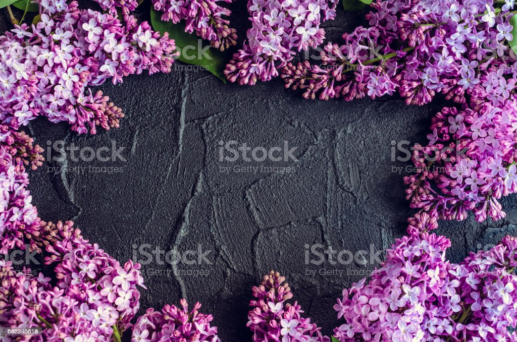 Beautiful lilac on dark stone background royalty-free stock photo