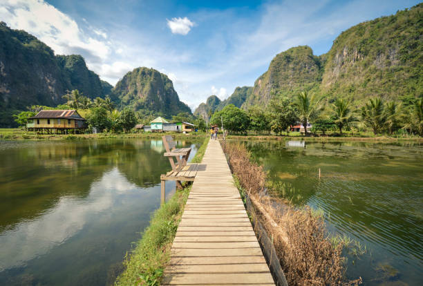 Beautiful limestones in Rammang Rammang park near Makassar, South Sulawesi, Indonesia Beautiful limestones and water reflections in Rammang Rammang park near Makassar, South Sulawesi, Indonesia sulawesi stock pictures, royalty-free photos & images