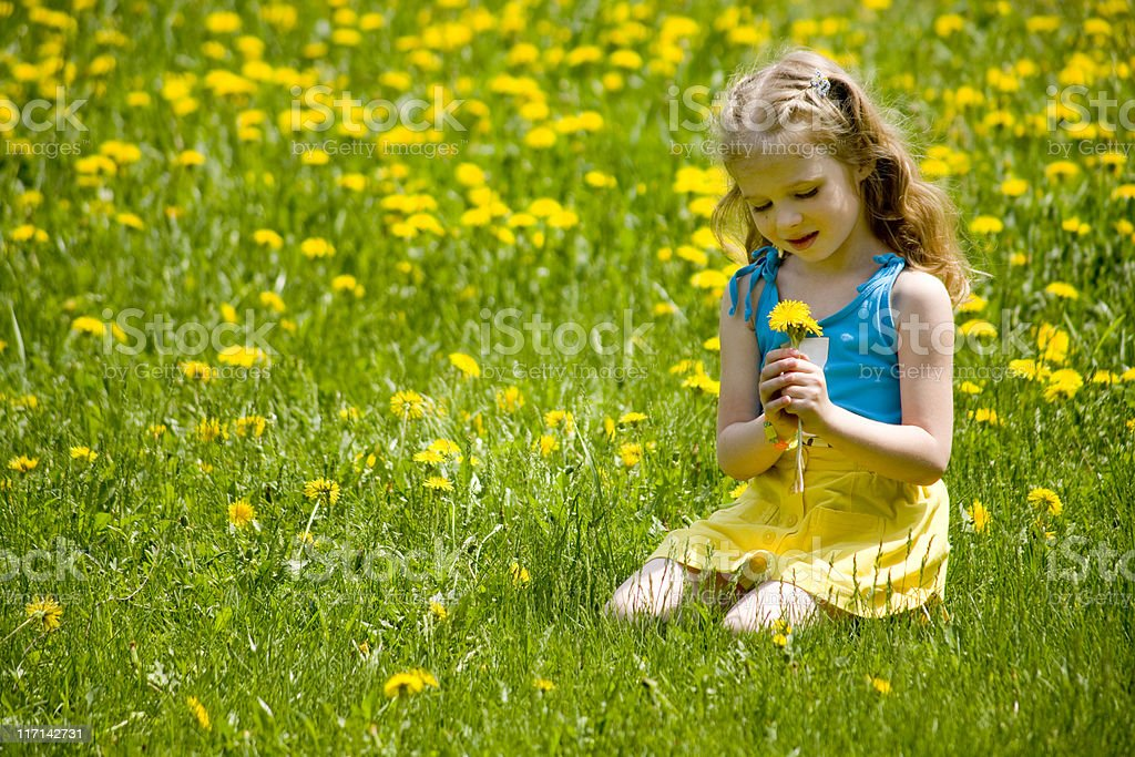 Beautiful little blonde looking at dandelions on the meadow. royalty-free stock photo