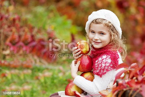 istock Beautiful little girl holding apples in the autumn garden. . Little girl playing in apple tree orchard. Toddler eating fruits at fall harvest. Outdoor fun for children. Healthy nutrition 1045819634