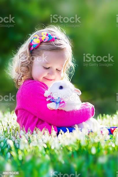Beautiful little girl playing with a rabbit picture id466250436?b=1&k=6&m=466250436&s=612x612&h=qlfgrjzq1yauetvjxkne7gomwzkicxbu5d5wgunrwqg=