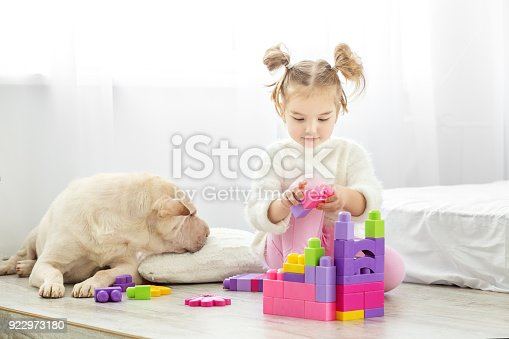 istock Beautiful little girl playing with plastic toy blocks. The dog l 922973180