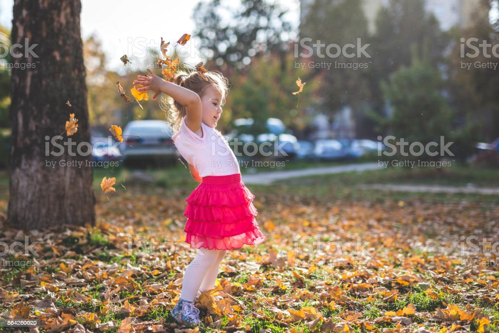 Beautiful little girl trowing autumn leaves royalty-free stock photo