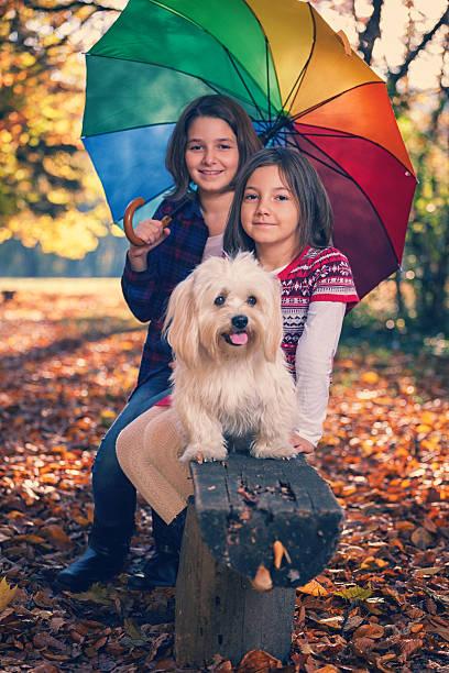 Beautiful little girls having fun in autumn forest picture id586173872?b=1&k=6&m=586173872&s=612x612&w=0&h=zc3ul7ucx 08tievjdxffrpr9mxu1sp10m4rm5yvuku=