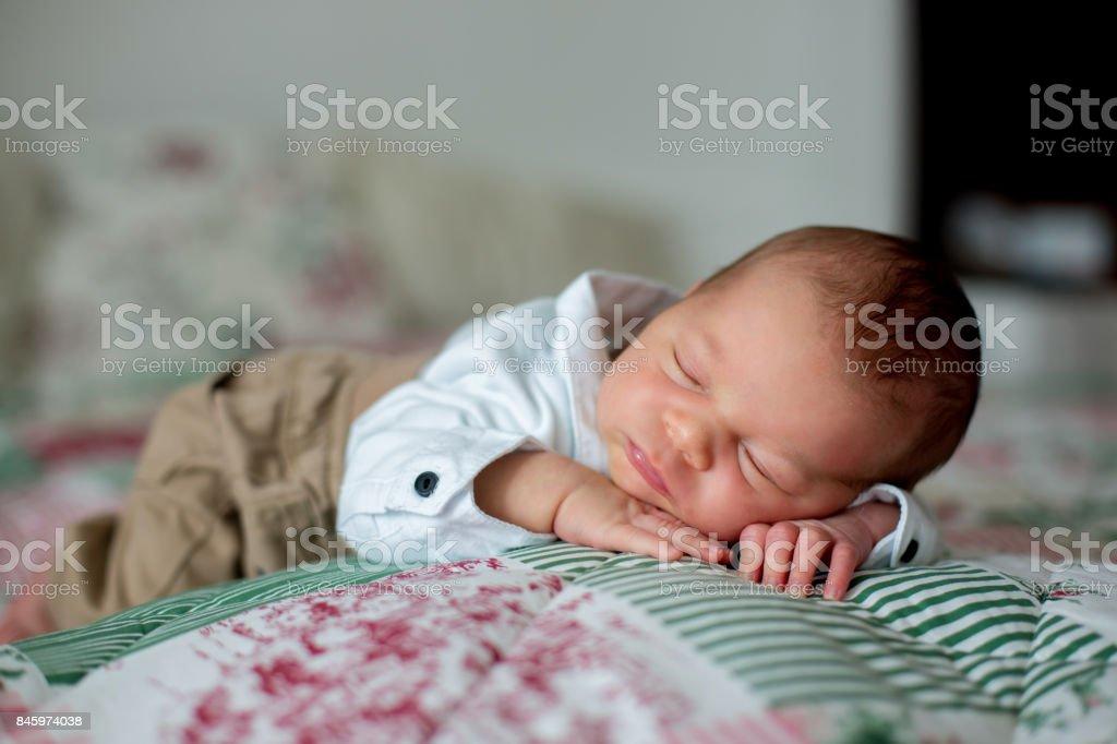 Fotografía de Hermoso Bebé Recién Nacido Niño Disfrazado De ...