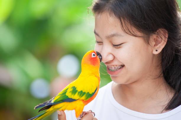 Schöne kleine Papagei Vögel stehen auf Frau Hand. Asiatische Teenager Mädchen spielen mit ihrem Haustier Papagei Vogel – Foto