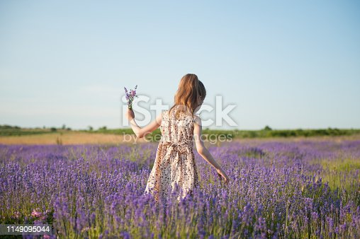 beautiful little thin girl in summer dress picking flowers on blossoming lavender field