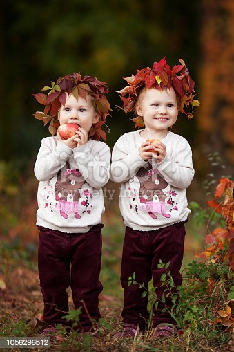 istock Beautiful little twin girls  holding apples in the autumn garden.  Toddler eating fruits at fall harvest. Healthy nutrition.  Autumn activities for children. Halloween and Thanksgiving time. 1056296512