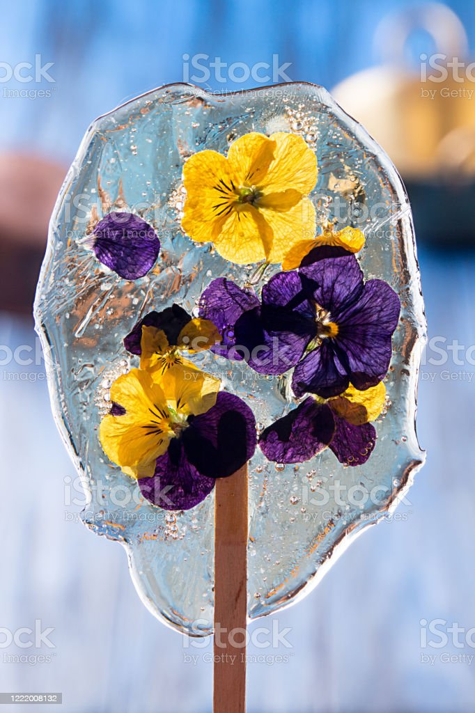Beautiful Lollipop Caramel With Edible Violet Flowers On Dark Blue Background Stock Photo Download Image Now Istock