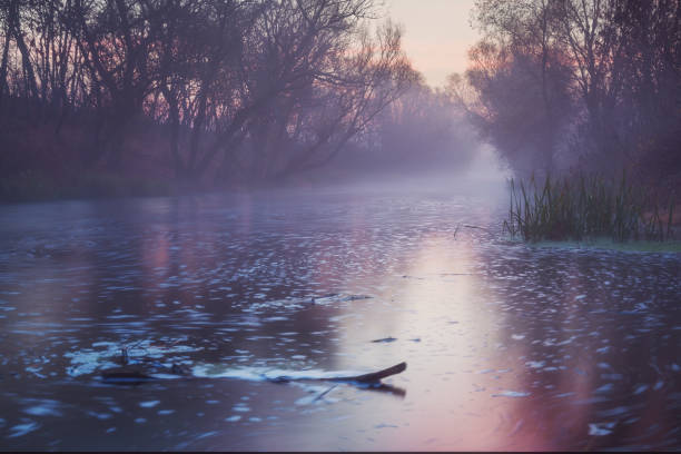 Beautiful long exposure photo of river vovered in fog stock photo
