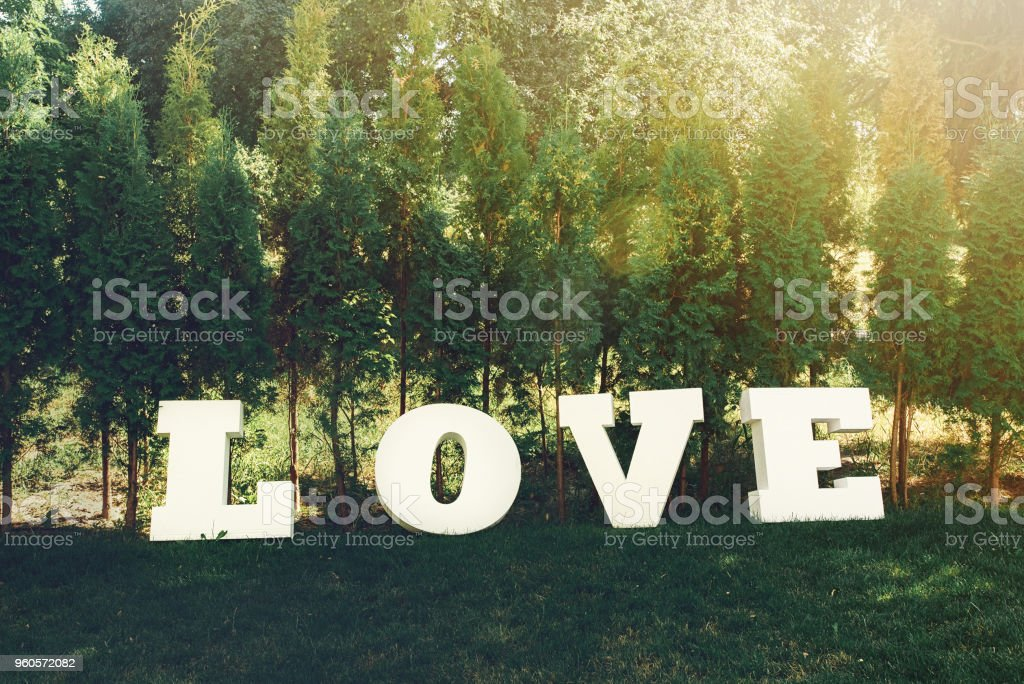 beautiful luxury white sign love with big letters on the background of sunny trees stock photo