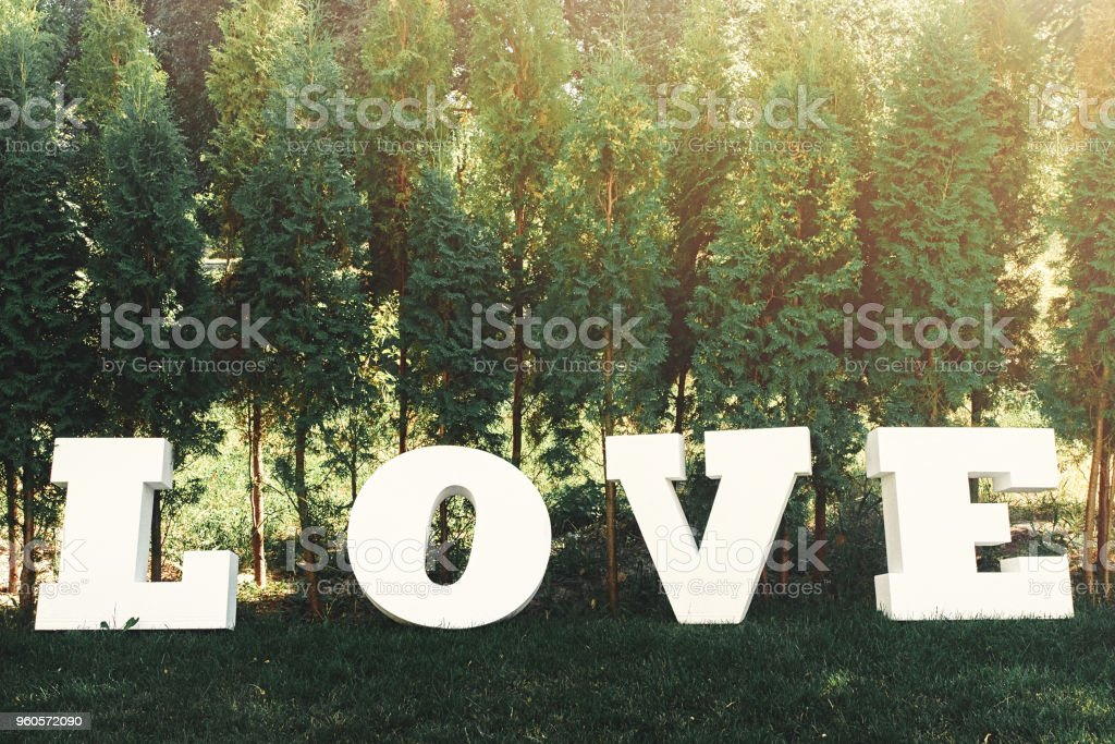 beautiful luxury white sign love with big letters on the background of trees stock photo