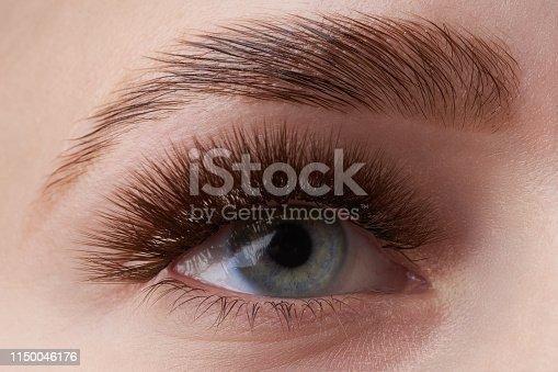 Beautiful macro photography of a woman's eye with extreme make-up of long eyelashes. Perfect long eyelashes. without cosmetics. Close-up fashion eye visage, lamination eyebrow beautiful
