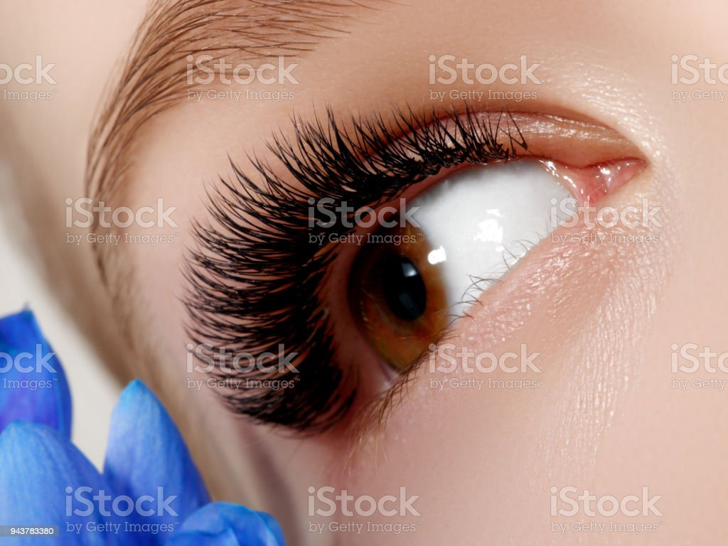 Beautiful Macro Shot Of Female Eye With Classic Clean Makeup Perfect