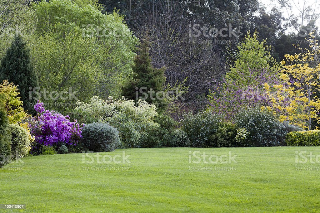 A beautiful maintained garden with trees stock photo