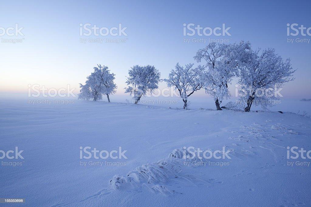 Beautiful Manitoba royalty-free stock photo