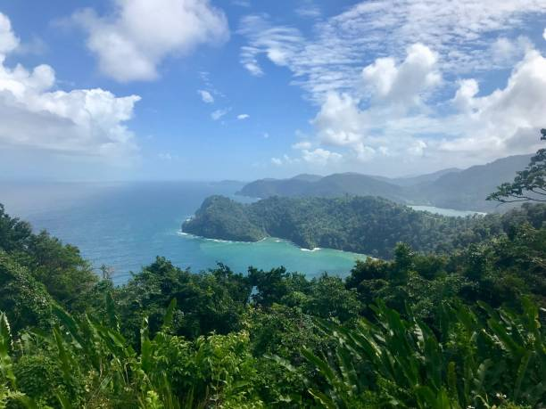 beautiful maracas lookout point with lush greenery and turquoise ocean on the caribbean island of trinidad & tobago - bay of water stock pictures, royalty-free photos & images
