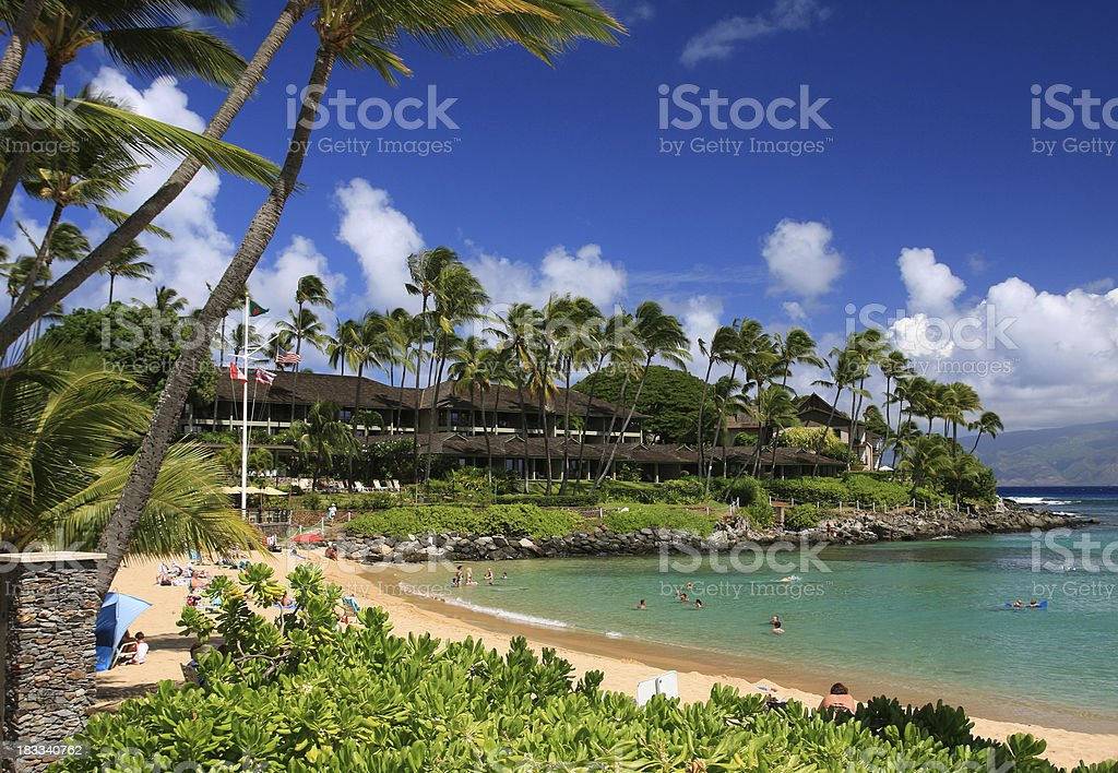 Beautiful Maui Hawaii Palm tree Pacific ocean resort hotel stock photo