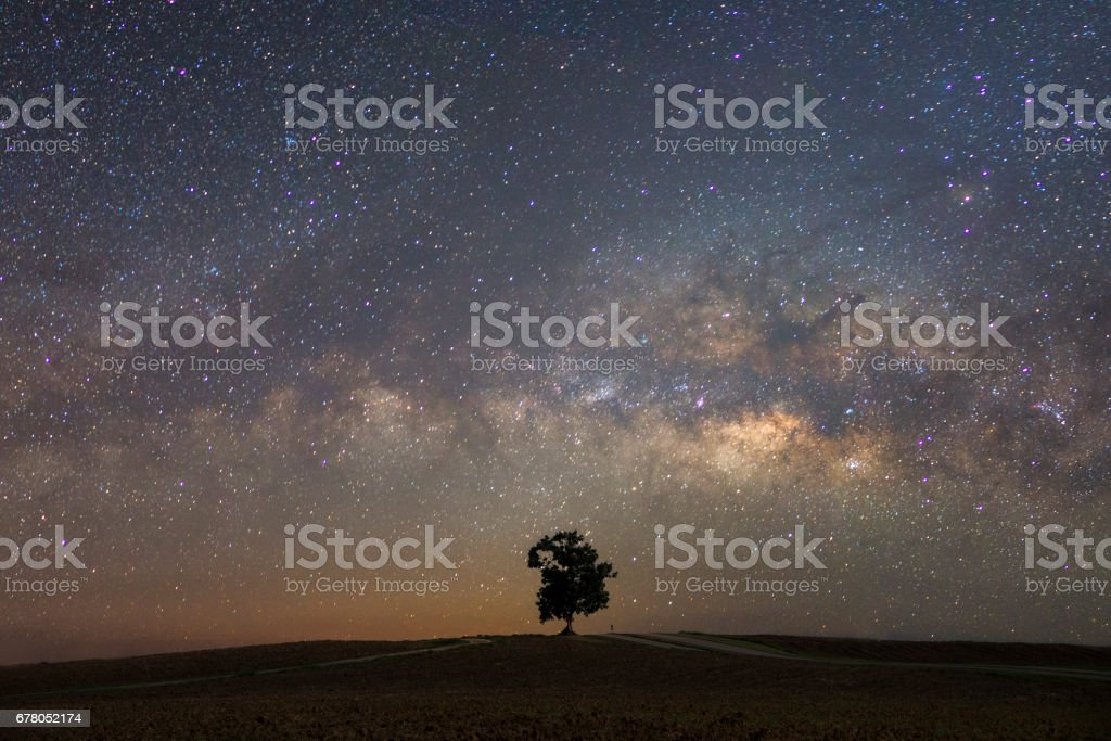 Beautiful milky way with a single treebackground.Landscape with night starry sky and a tree on hill stock photo