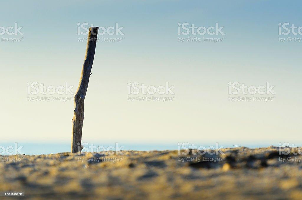 Beautiful morning at the tropical beach royalty-free stock photo