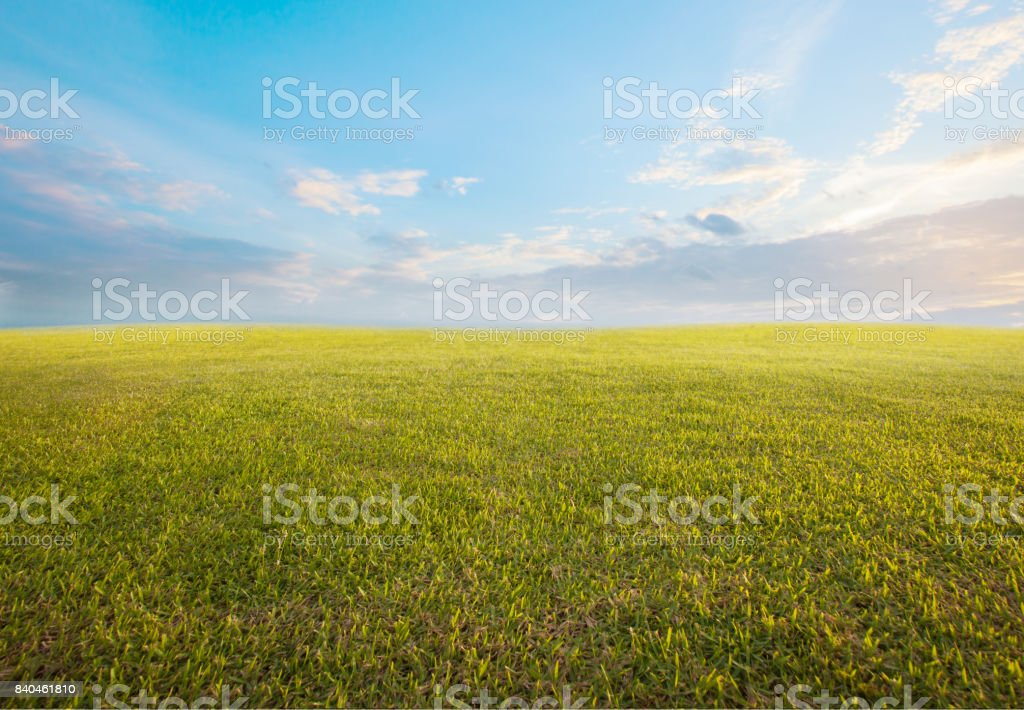 beautiful morning sky and empty green grass use as background backdrop stock photo