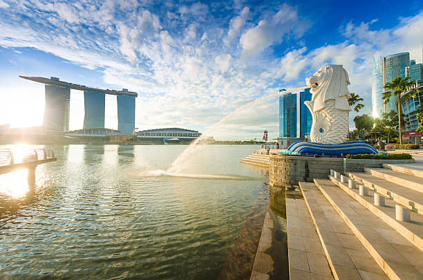 Beautiful Morning Sunshine in Merlion Park Singapore Singapore, Singapore - November 4, 2012: Tourist beside the Merlion statue fountain, iconic symbol of Singapore, overlooking the Marina Bay waterfront, the Esplanade Theatres, luxury hotels merlion fictional character stock pictures, royalty-free photos & images