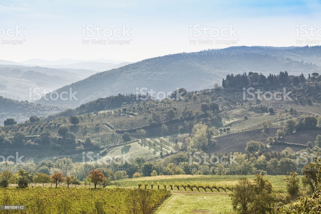 Beautiful morning with some fog between the hills with vineyards in Tuscany in Italy stock photo