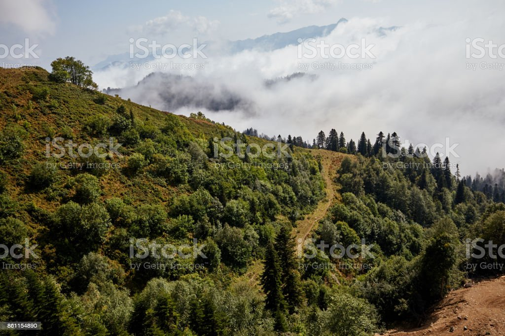 Beautiful Mountain Forest Landscape Stock Photo More Pictures Of