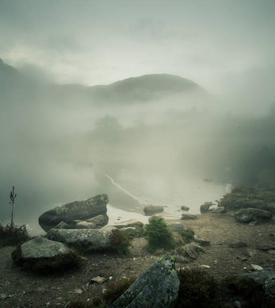 A beautiful mountain lake in a fog in Tatry, Slovakia. Low saturation retro style stock photo