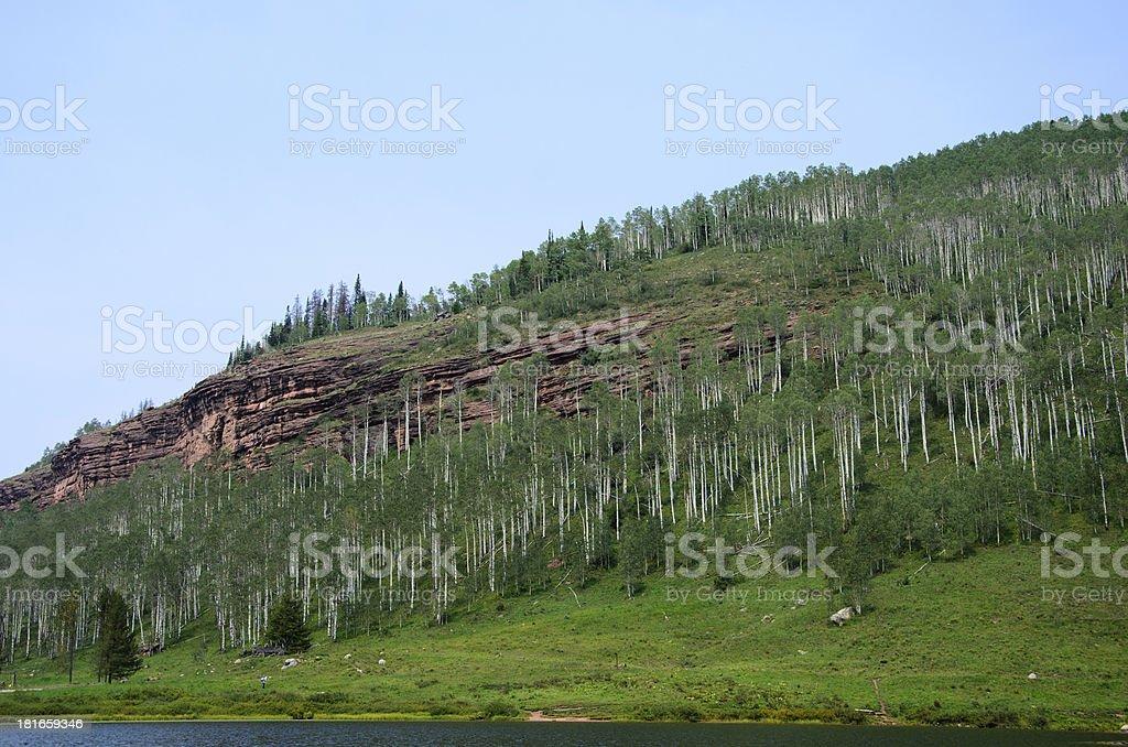 Beautiful Mountain Lake in Summer stock photo