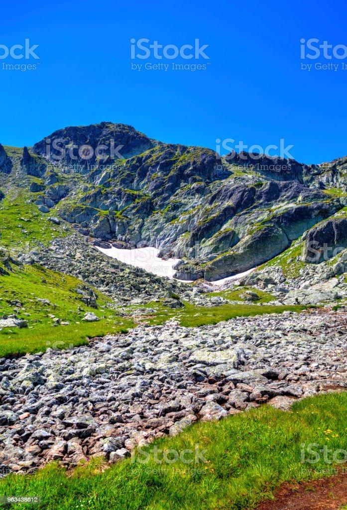 Magnifique paysage de montagne - Photo de Arbre libre de droits