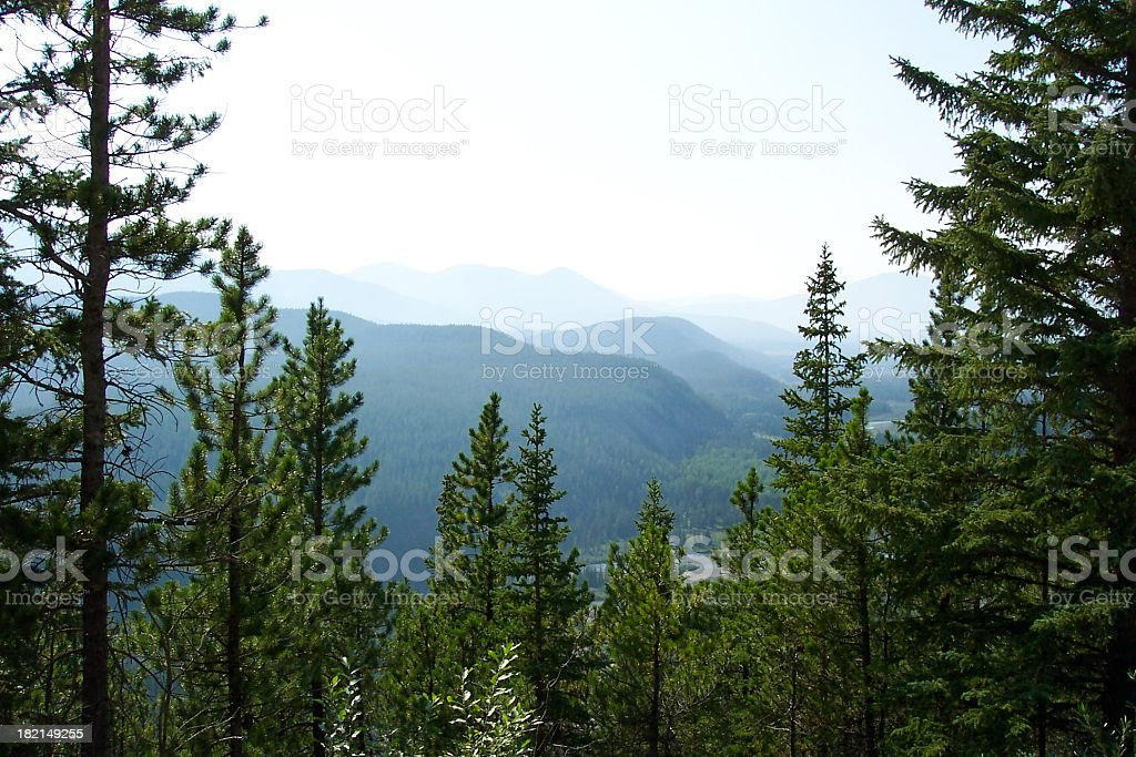 Beautiful mountain landscape surrounded by fog and trees stock photo
