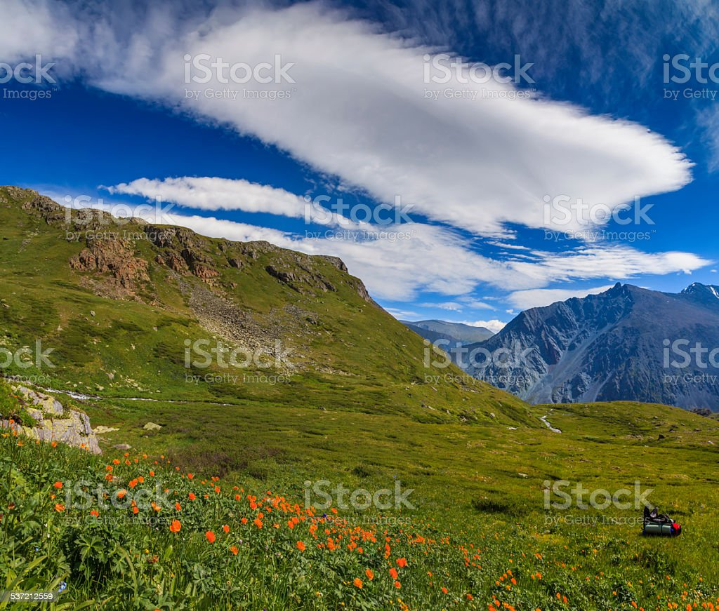 Beautiful Mountain Landscape With Flowers And Blue Sky Stock Photo