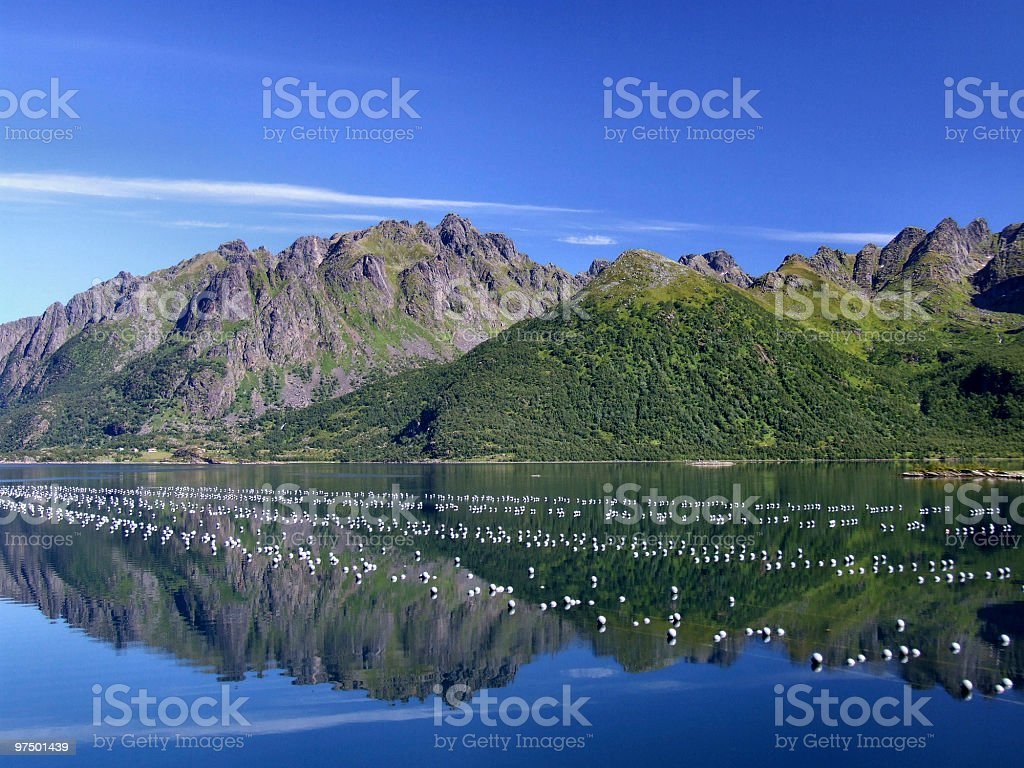 Beautiful mountains and oyster farm royalty-free stock photo