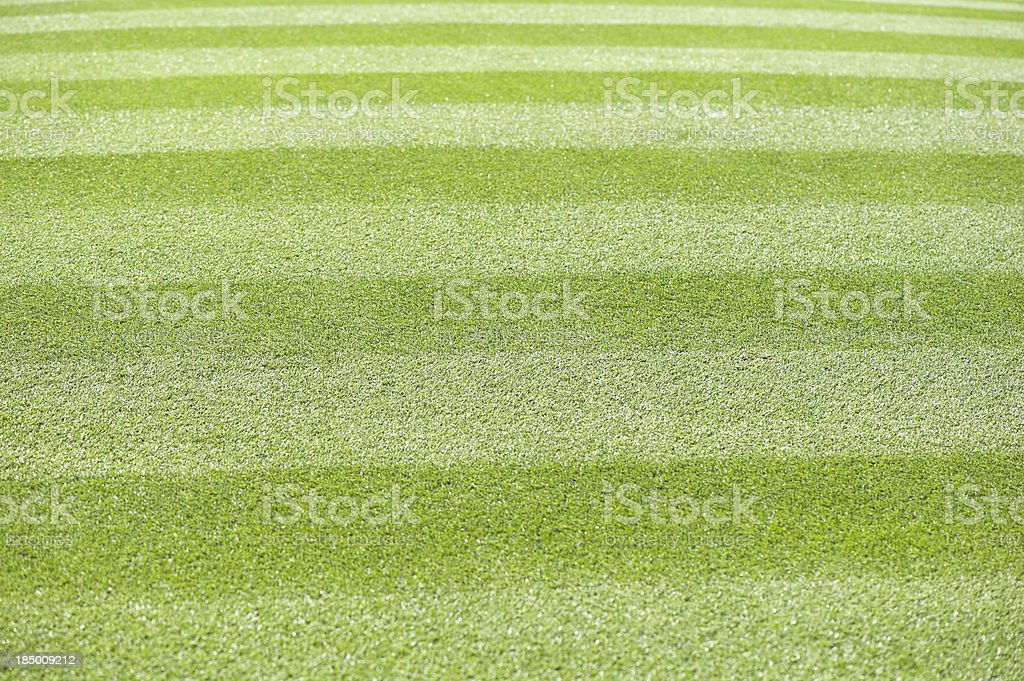 beautiful mowed grass at a golf course royalty-free stock photo