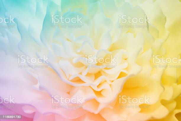Beautiful multicolor flower made of synthetic material abstract picture id1156891730?b=1&k=6&m=1156891730&s=612x612&h=rcg idp2sygacrss8ja9udxapxcjyblhvggt8tzusjc=