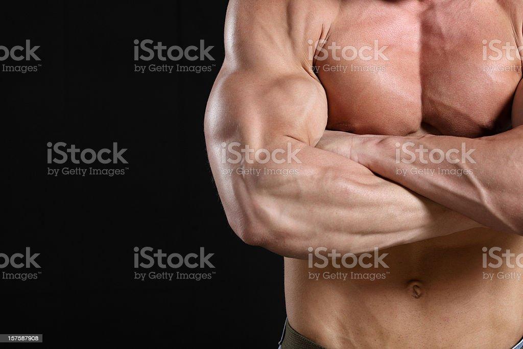 Beautiful muscular male body detail royalty-free stock photo