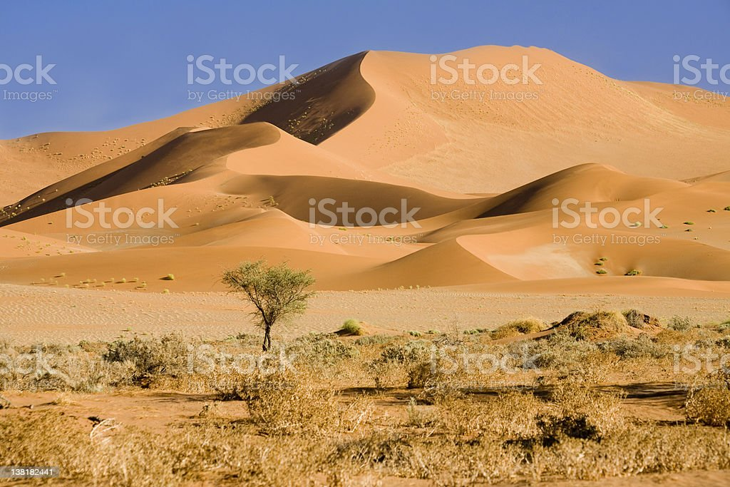 Beautiful Namib desert dunes royalty-free stock photo