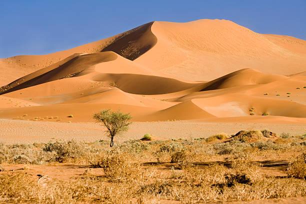 Wunderschöne Namib-Dünen – Foto
