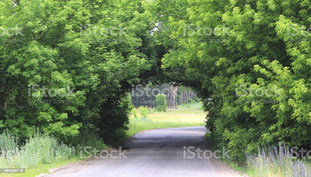 beautiful natural arch, similar to tunne royalty-free stock photo