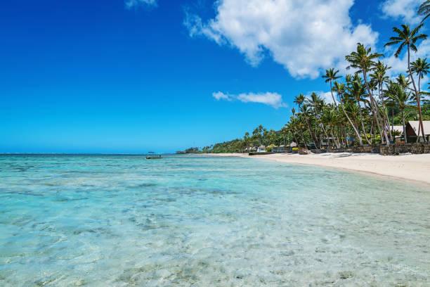 beautiful natural beach fiji island - fiji stock photos and pictures