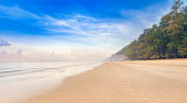 Beautiful natural foggy morning at the calmness beach with cloudy sky and pinery in vacation summer time