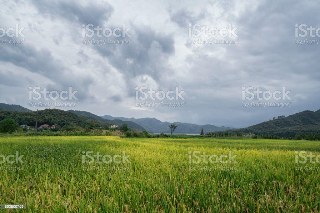 beautiful natural landscape in zhejiang,china stock photo