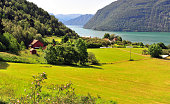 Green valley with fjord at Ornes village, Norway
