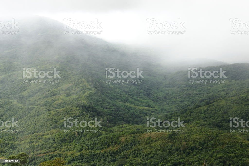 Beautiful natural scenery of mist over green mountain. zbiór zdjęć royalty-free